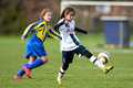 Tottenham Hotspur Girls U12 v Harvesters FC Girls U12 2015-11-28