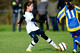 20151128-103920 Tottenham Hotspur Girls U12 v Harvesters FC Girls U12